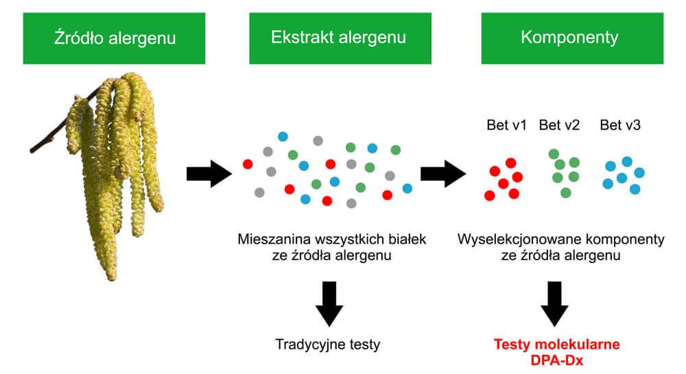 Testy molekularne na alergię