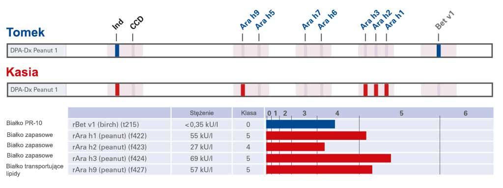 WYNIK testu EUROLINE DPA-Dx Orzeszki ziemne